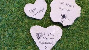 Leuk voor kids: geef op Valentijnsdag zelfgemaakt zaaipapier cadeau