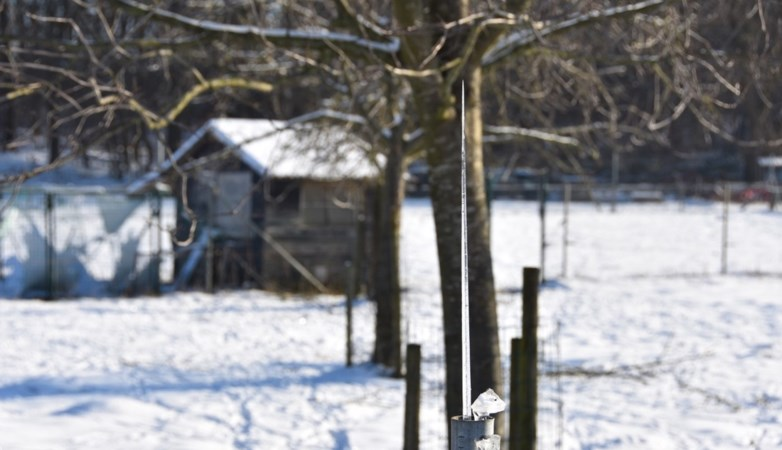 Opmerkelijk natuurfenomeen in Beesel: ijspiek groeit omhoog