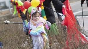 Carnafval in Sittard-Geleen: puinruimende 'ploggers' prikken stad schoon