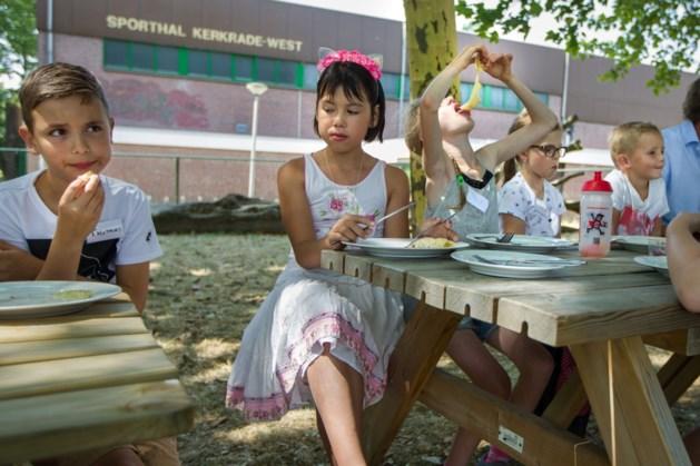 Pleidooi voor zomerschool groep 8 in Maastricht