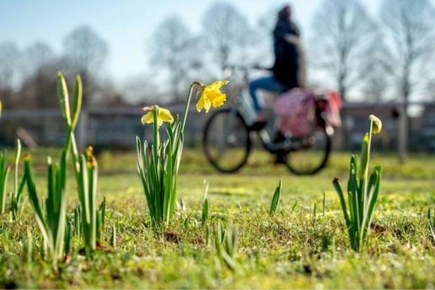 Limburgse warmterecords gaan dit weekend sneuvelen