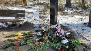 Nieuwsuur: complotdenkers hebben het gemunt op gedenkstenen Nicky Verstappen en Marianne Vaatstra