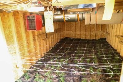 Bijzondere ontdekking: hennepkwekerij aangetroffen in ondergrondse ruimte in bos