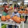 Sociaal Werkbedrijf Westrom in Roermond krabbelt uit dal