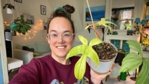 Plantfluencer: 'Een nieuw blad brengt vrolijkheid in een lastige periode, planttherapie noemen we dat'