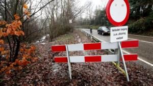 Staatsbosbeheer werkt aan natuurherstel in gemeente Meerssen, hinder op Slingerberg