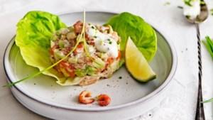 Een favoriet van Janneke Philippi: zalmtaartje met avocado en bieslookdressing