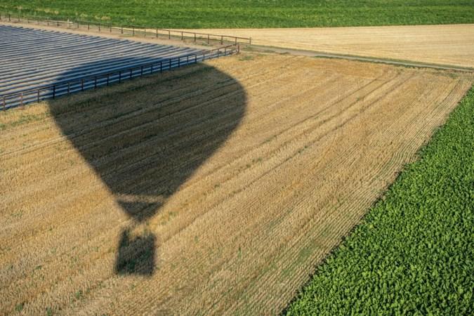 Paard in Maasbree dood na landing luchtballon; bedrijf moet schadevergoeding betalen