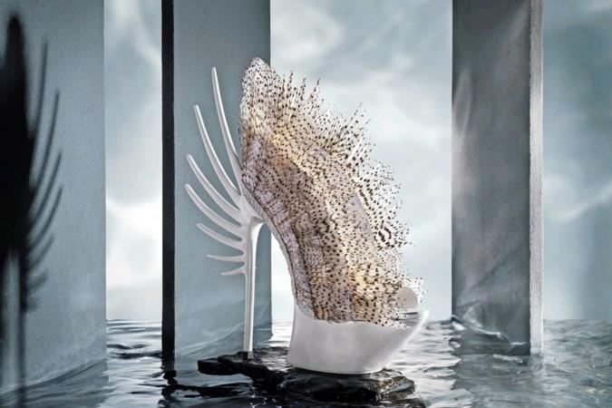 Op deze schoenen kun je beter niet lopen, maar Quint Verhaart wint met zijn 'Lionfish shoes' wel prestigieuze prijzen
