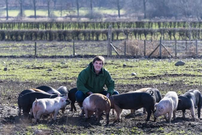 Geen plan B voor beleefpark Limburgs kloostervarken