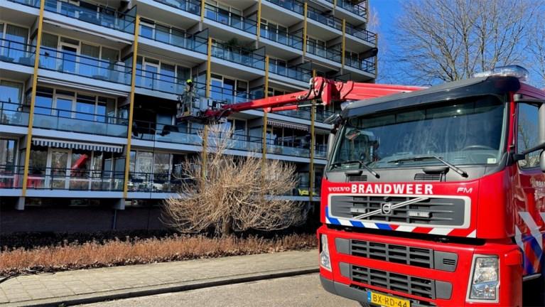 Cavia's krijgen zuurstof toegediend na flatbrand in Roermond