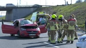 Auto rolt van talud af en belandt op snelweg: A73 korte tijd afgesloten