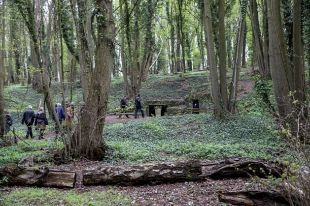 Meer dan zeven hectare nieuwe aanplant in het Savelsbos