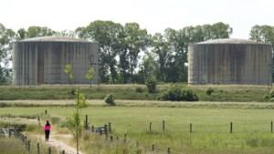 Mestverwerker in Horst en provincie Limburg steggelen over hoogte van dwangsom