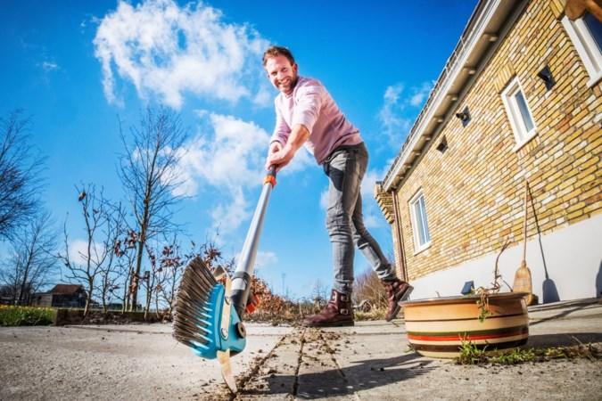 Tuinrubriek: Grijp in voordat straatjesgras je hele tuin overneemt