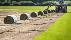Graszodenbedrijf uit Heythuysen opeens toonbeeld van ethiek door weigeren WK: 'Een bedrijf met ruggengraat'