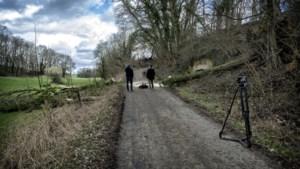 'Kans op dood onder omwaaiende boom is kleiner dan getroffen worden door bliksem'