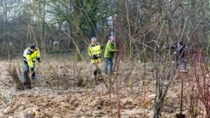 Bomen in plaats van akkers: Stichting Voedselbos Roerdalen wil meer samenwerken met de natuur
