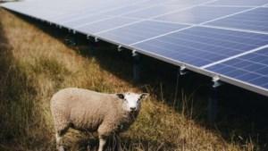 Voerendaal kiest voor plan dat regels opstelt en eventuele locaties voor zonneweides aanwijst