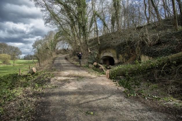 Waarschuwing Heuvellandgemeenten: 'Kom niet wandelen in Zuid-Limburgse bosgebieden'