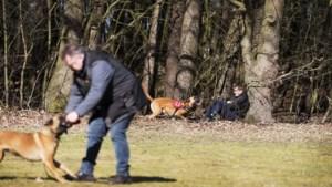 Politiehondenvereniging en Limburgs Landschap recht tegenover elkaar in strijd om trainingsveld in Jammerdal