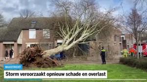 Video: Storm veroorzaakt schade en overlast in Limburg