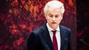 Nexit en immigratiestop: dit zijn de verschillen en overeenkomsten tussen rechts-populisten in Nederland