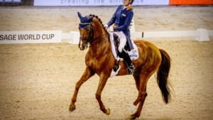 Paardensportbond: na 11 april weer internationale wedstrijden in Nederland