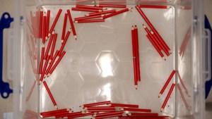 Collector's item: rood stempotlood aangeboden voor 25.000 euro