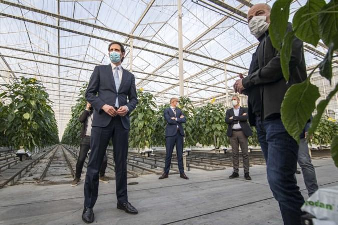 De liefde tussen Limburgse boeren en het CDA is bekoeld