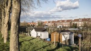 Tuinhuisjes bij volkstuinencomplex in Roermond voortaan gedoogd