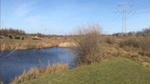 Informatieavond over plannen aanleg nieuwe beek voor vissen in natuurgebied in Stevensweert