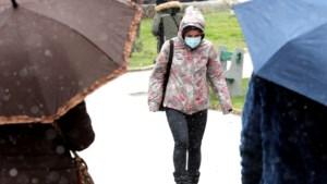 Het Bretonse virus met de bijnaam 'spookvariant': is het een slimme truc of doodlopende weg?