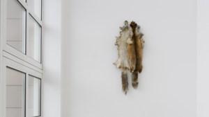 Kunstenaar Floor Martens geeft zichzelf bloot, maar Bonnefantenmuseum is nog dicht