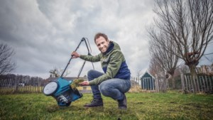 Boer Tom: een mooi, vol en groen grastapijt ligt binnen handbereik