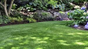Van een groene tuin wordt iedereen blij