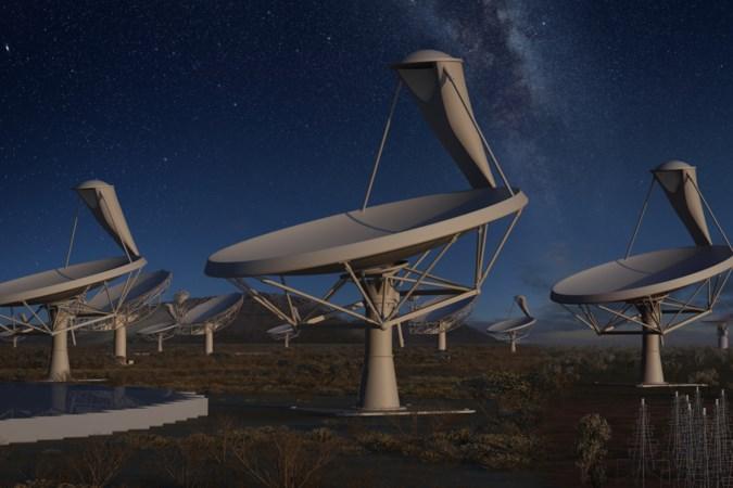 Heerlens internetbureau Betawerk bouwt website voor de grootste radiotelescoop ter wereld SKA