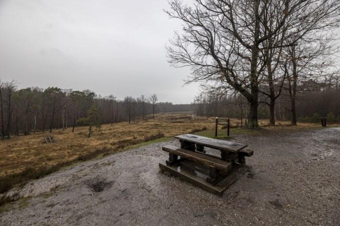 Schutterspark in Brunssum moet de ingang worden voor grensoverschrijdend Heidenatuurpark