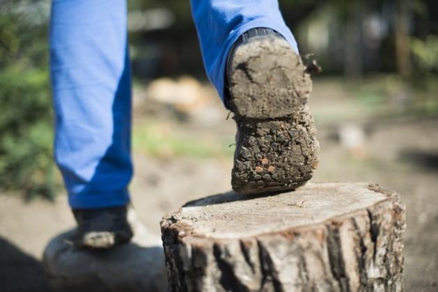 Xonar-medewerkers zetten stappen voor goed doel in 'stapril'