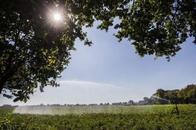 Grondwaterstand in delen Nederland 'verre van ideaal'