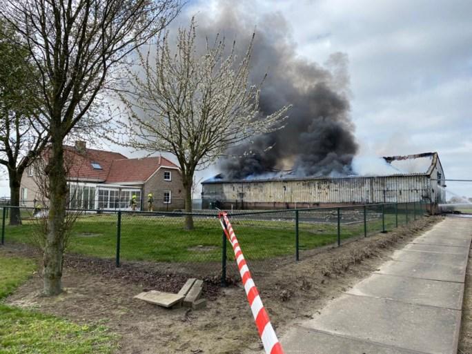 Grote brand zorgt voor flinke rookontwikkeling in Panningen