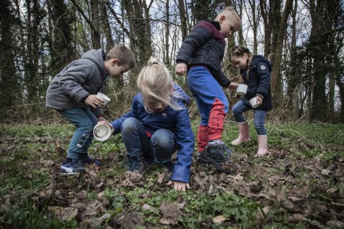 Kids Party van IVN, Jong NL en scoutingclubs is vooral een thuisblijffeestje, maar kinderen kunnen toch nog de natuur in