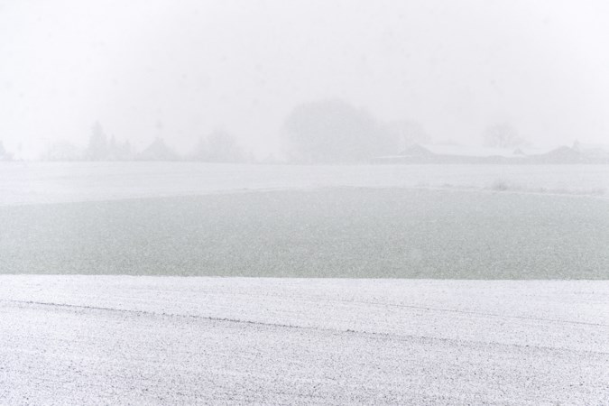 Sneeuwjachten in Limburg: plots ademen we lucht in die vorige week nog boven Noordpool hing