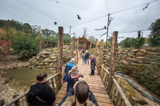Ook dierentuinen, musea en theaters in Limburg open met toegangstest