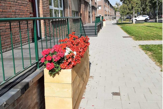 Alle inwoners van Sittard-Geleen mogen hun gemeente groener maken met behulp van De Tuinman