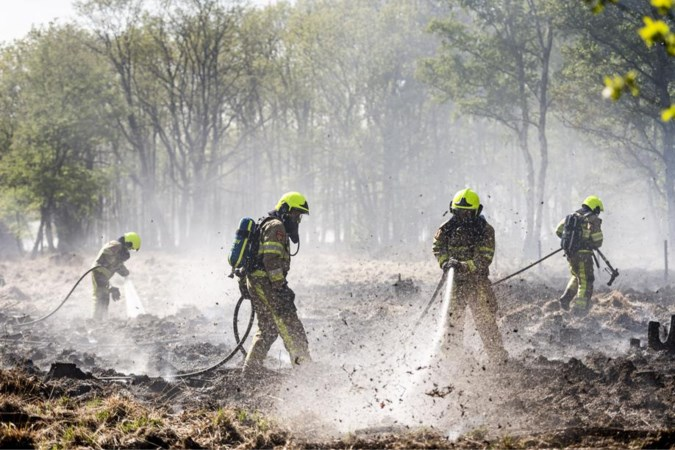 Zuidelijke veiligheidsregio's willen eigen natuurbrandeenheid