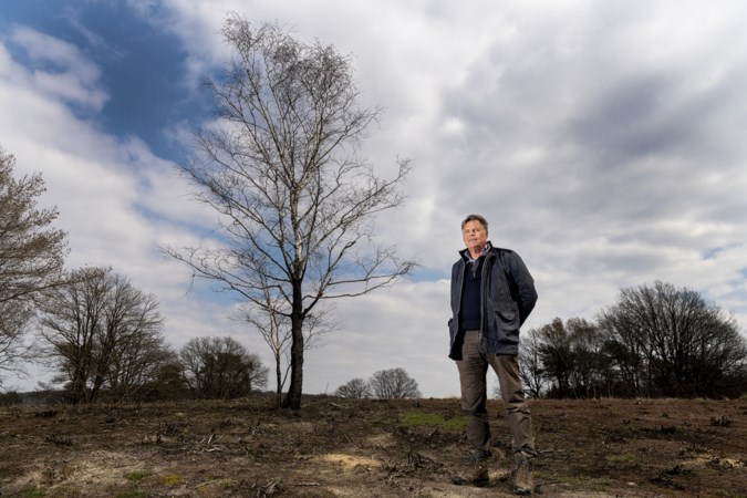 Een jaar na de grote branden in De Meinweg en De Peel: welke lessen hebben we geleerd?