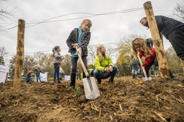 Tiny Forest bij Basisschool Spaubeek dringend op zoek naar sponsoren