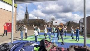 Basisscholen genieten van de zon tijdens Buitenlesdag
