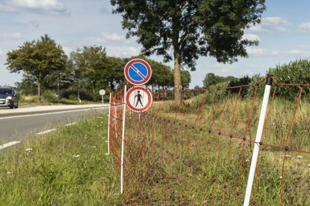 Onderhoud aan bermen in buitengebied Peel en Maas